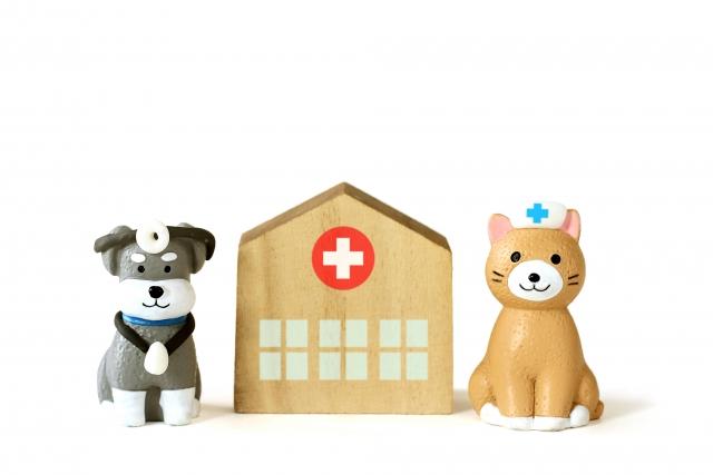 病院保育士、医療保育士の仕事内容について徹底紹介